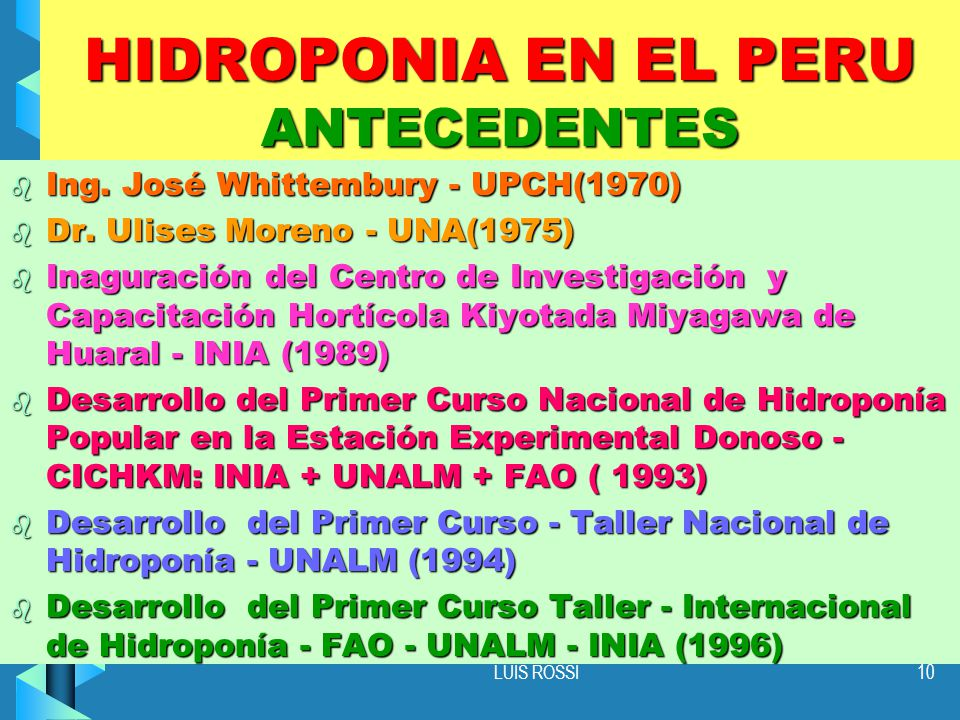 HIDROPONIA EN EL PERU ANTECEDENTES
