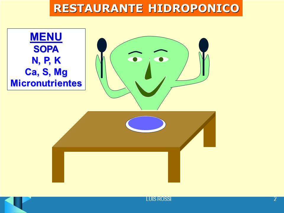 RESTAURANTE HIDROPONICO