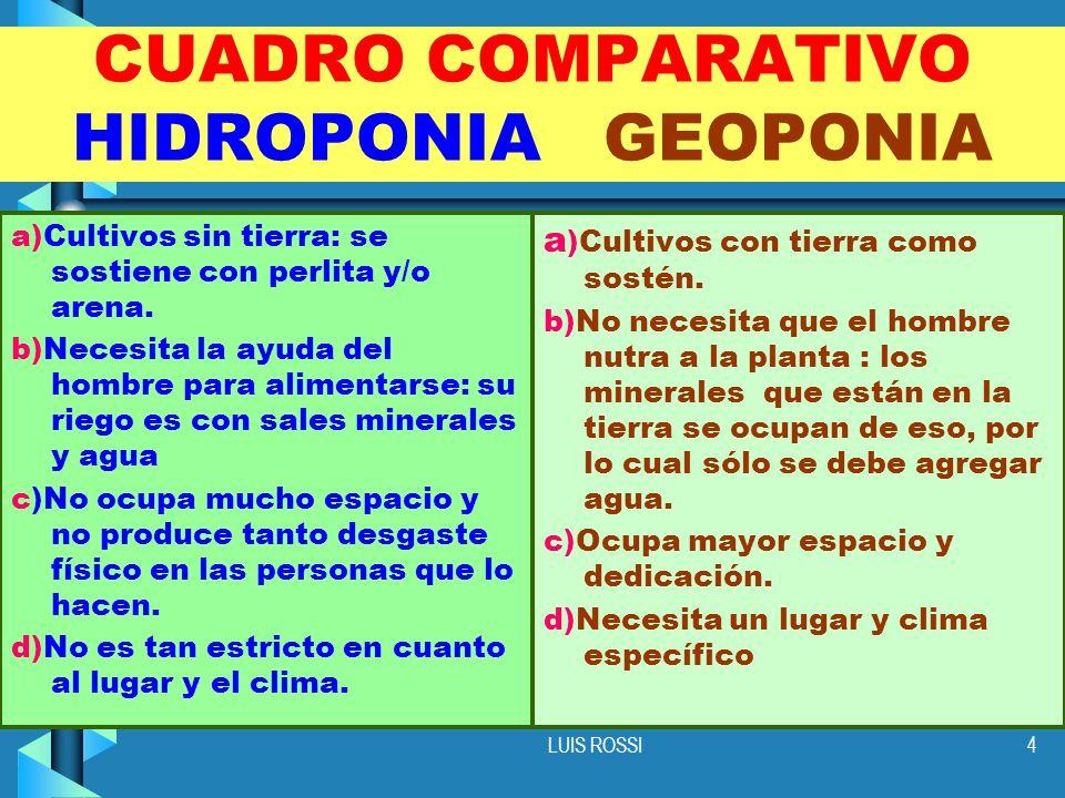 CUADRO COMPARATIVO HIDROPONIA GEOPONIA