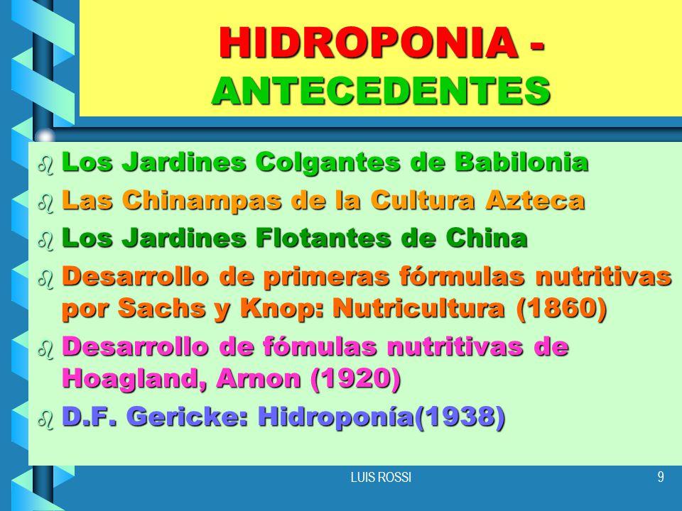 HIDROPONIA - ANTECEDENTES