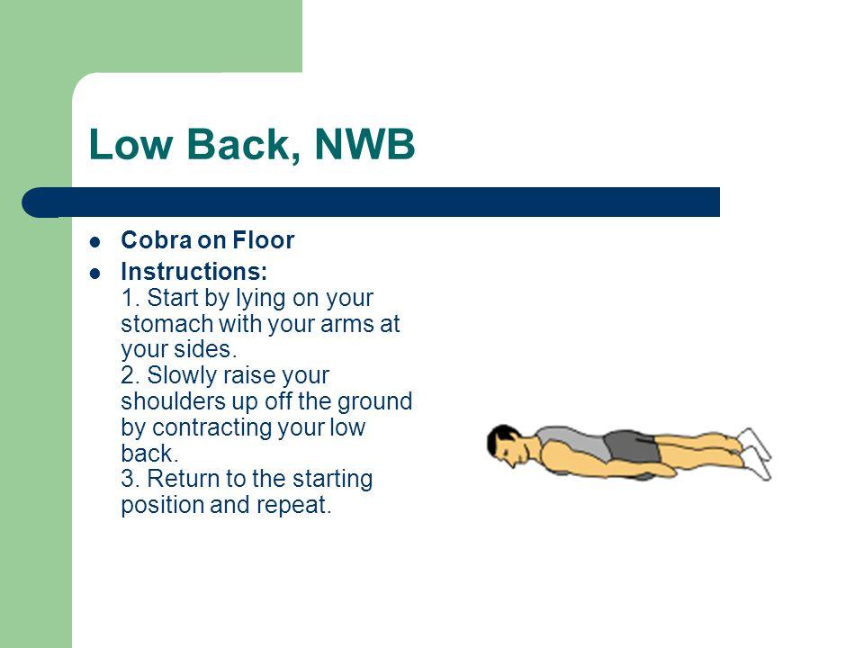 Low Back, NWB Cobra on Floor