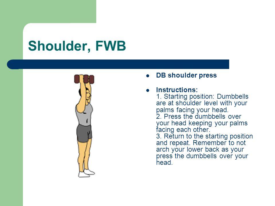 Shoulder, FWB DB shoulder press