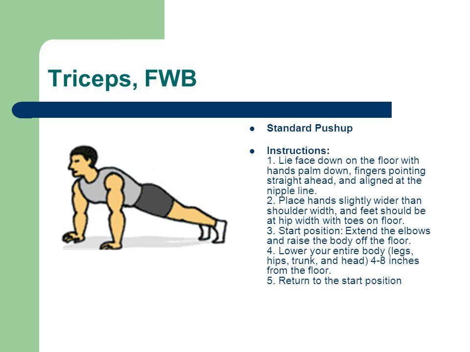 Triceps, FWB Standard Pushup