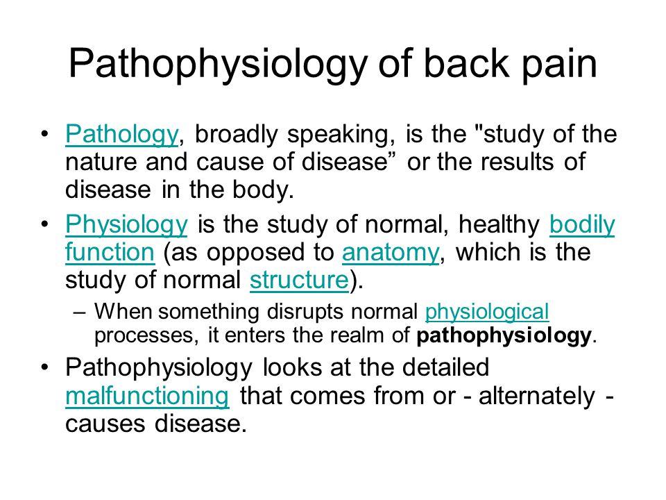 Pathophysiology of back pain