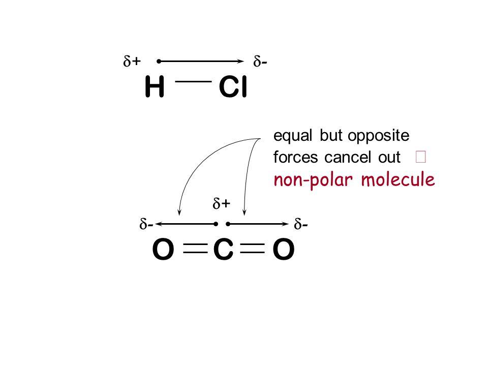 H Cl O C O equal but opposite forces cancel out Þ non-polar molecule