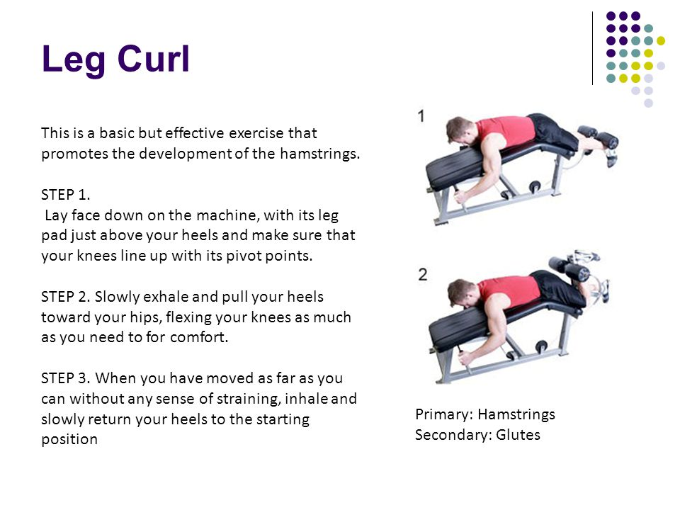 Leg Curl This is a basic but effective exercise that promotes the development of the hamstrings. STEP 1.