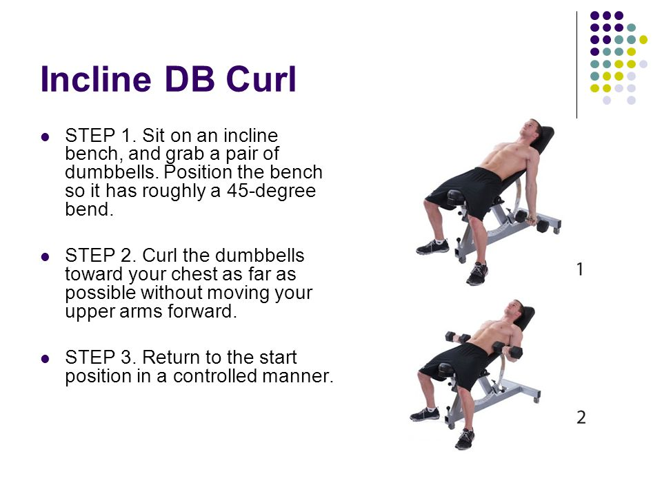 Incline DB Curl STEP 1. Sit on an incline bench, and grab a pair of dumbbells. Position the bench so it has roughly a 45-degree bend.