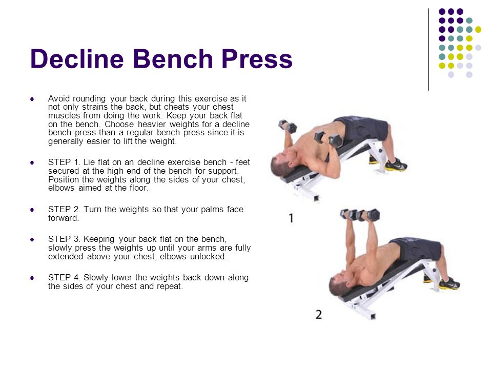 Decline Bench Press Muscles Worked 28 Images Decline