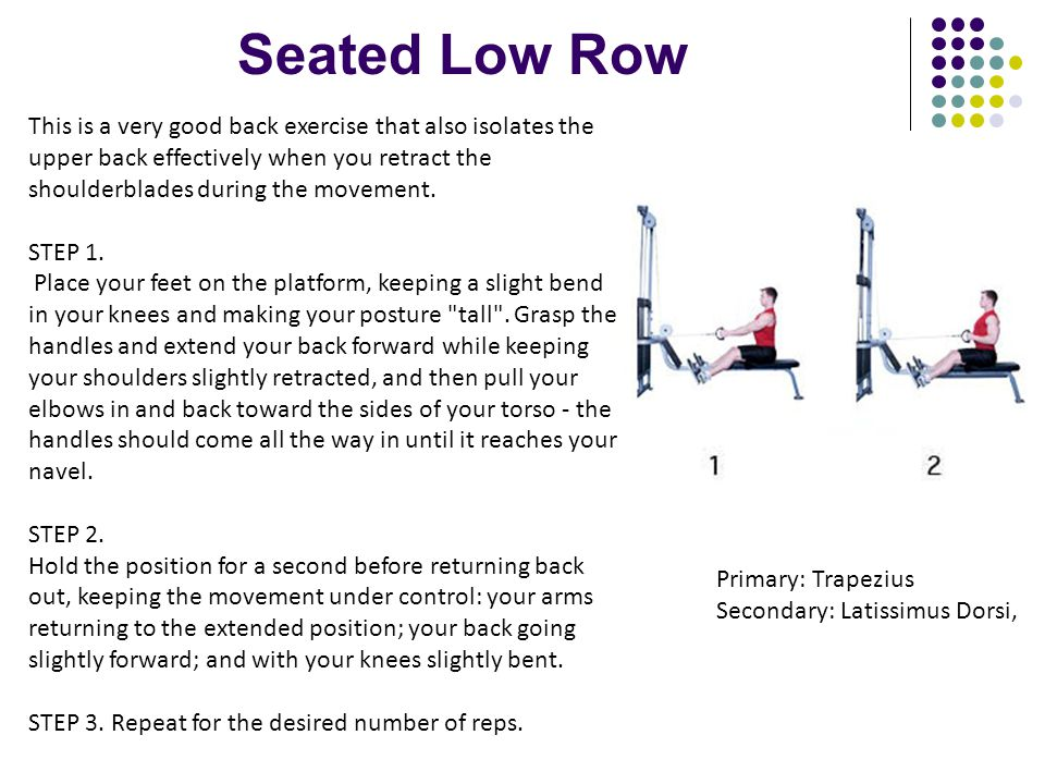 Seated Low Row