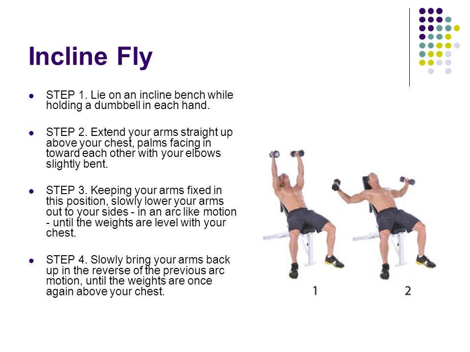 Incline Fly STEP 1. Lie on an incline bench while holding a dumbbell in each hand.
