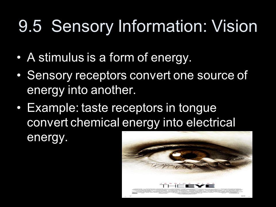 9.5 Sensory Information: Vision