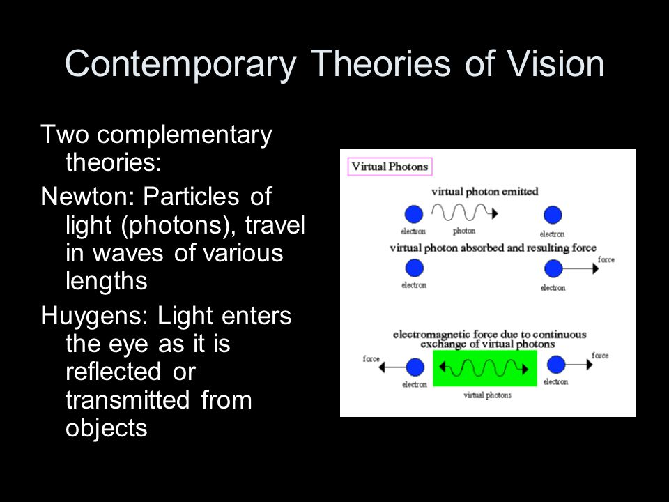 Contemporary Theories of Vision
