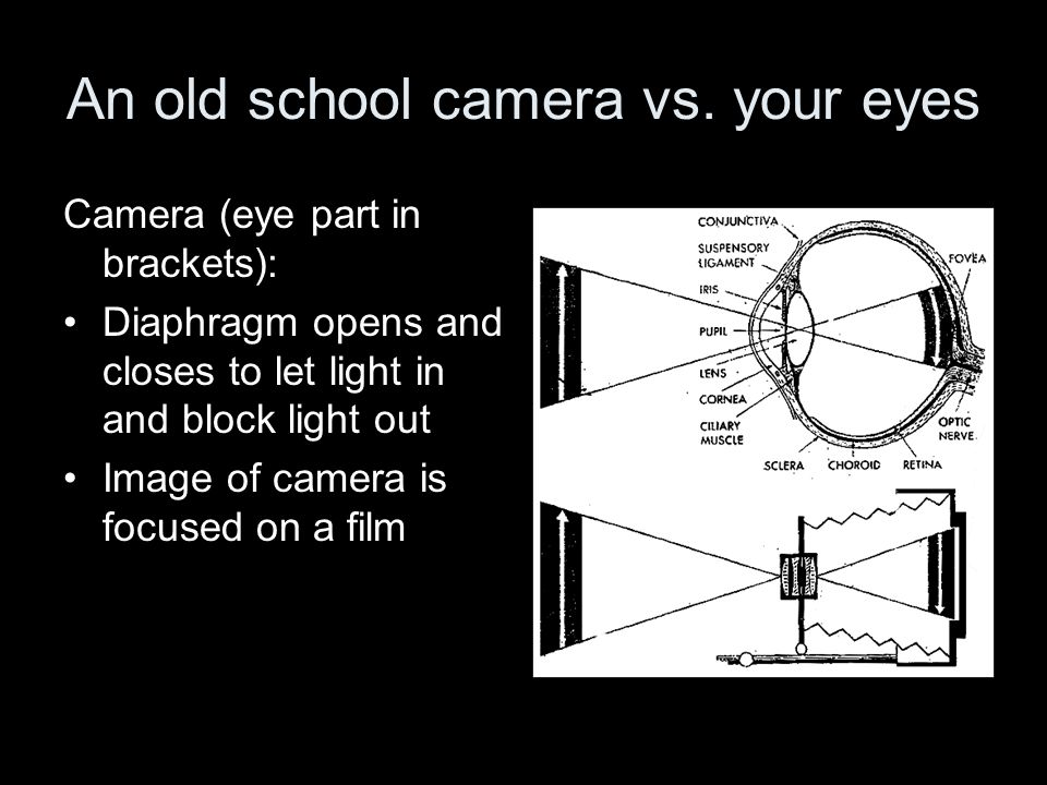 An old school camera vs. your eyes