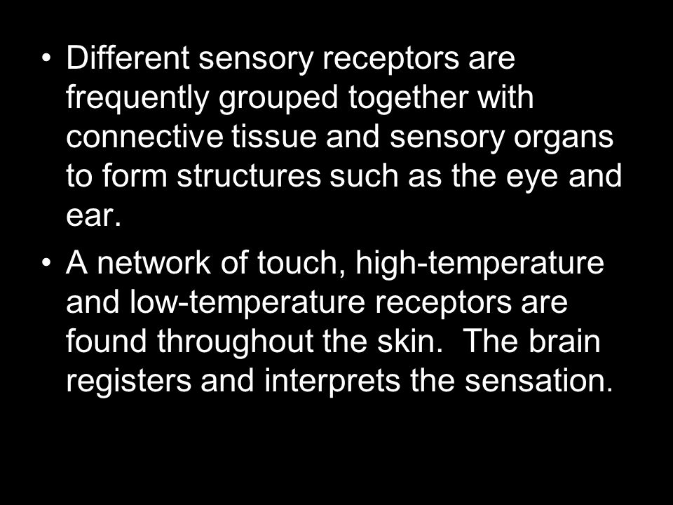 Different sensory receptors are frequently grouped together with connective tissue and sensory organs to form structures such as the eye and ear.