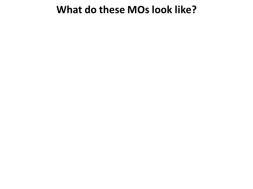 What do these MOs look like