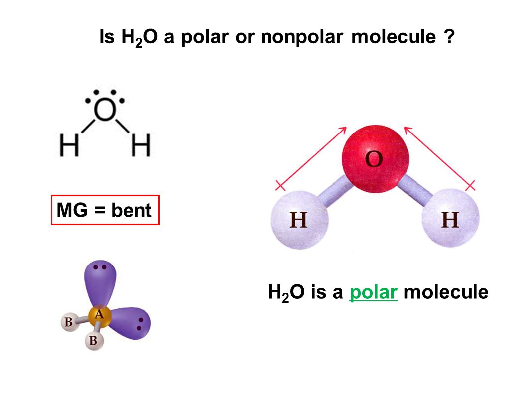 Polar Molecule Examples Image Collections Example Cover Letter For