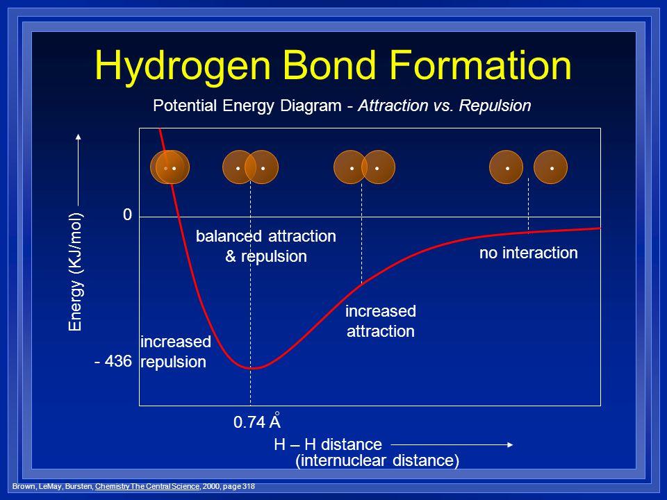 Hydrogen Bond Formation