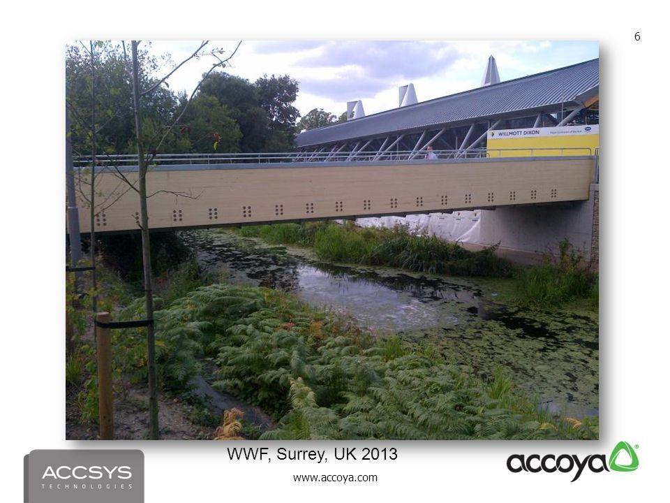 WWF, Surrey, UK 2013 WWF, Surrey, UK 2013