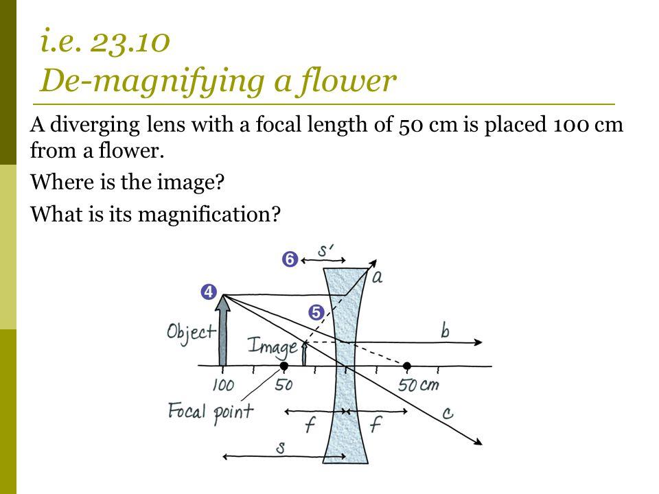 i.e. 23.10 De-magnifying a flower