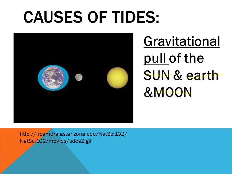 Causes of tides: Gravitational pull of the SUN & earth &MOON