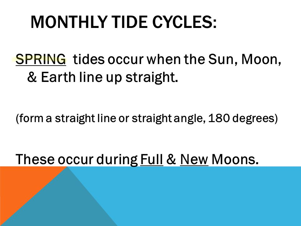 Monthly Tide Cycles: SPRING tides occur when the Sun, Moon, & Earth line up straight. (form a straight line or straight angle, 180 degrees)