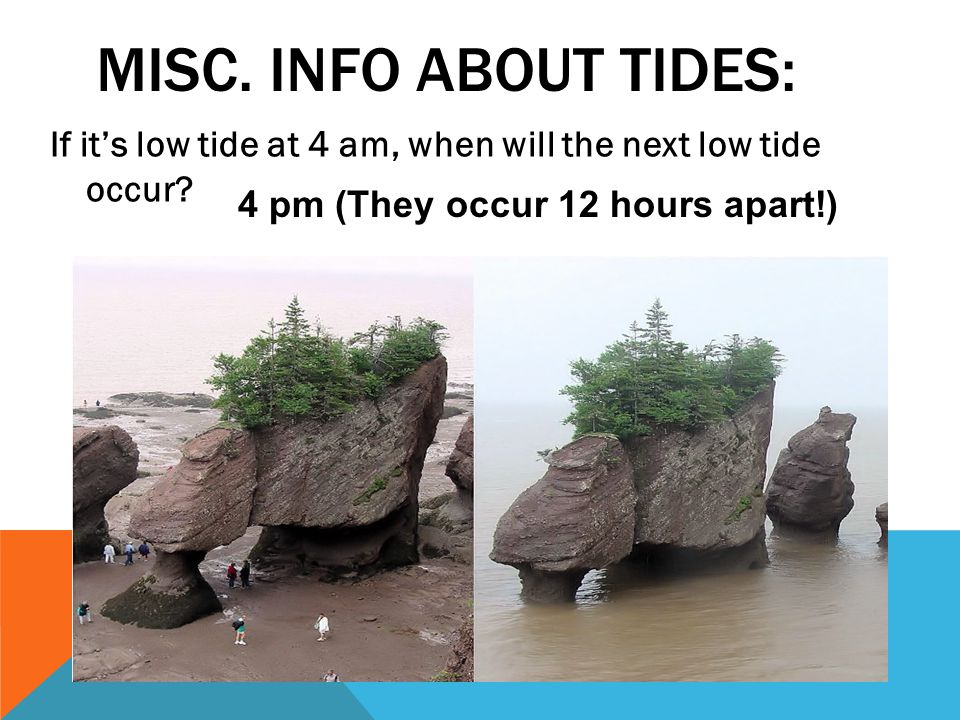 Misc. info about tides: If it's low tide at 4 am, when will the next low tide occur.