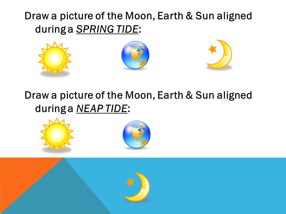 Draw a picture of the Moon, Earth & Sun aligned during a SPRING TIDE: Draw a picture of the Moon, Earth & Sun aligned during a NEAP TIDE: