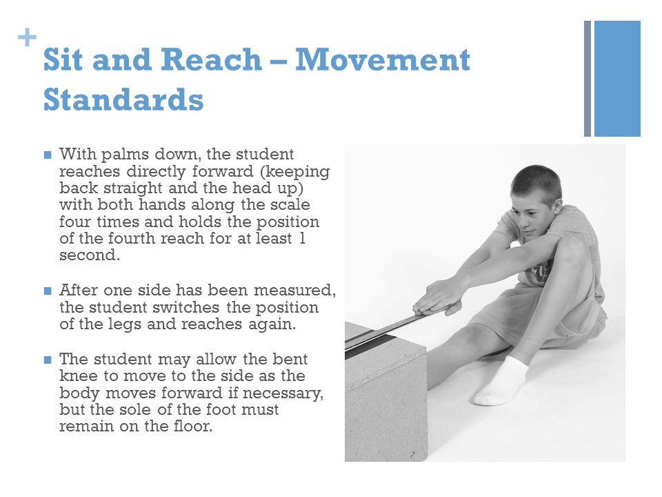 Sit and Reach – Movement Standards