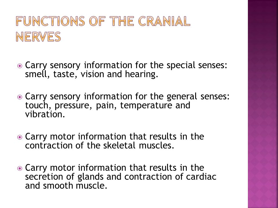 Functions of the cranial nerves