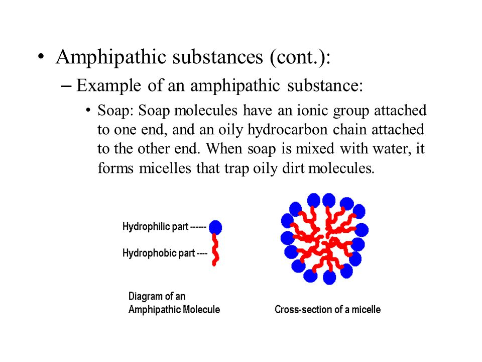 Amphipathic substances (cont.):