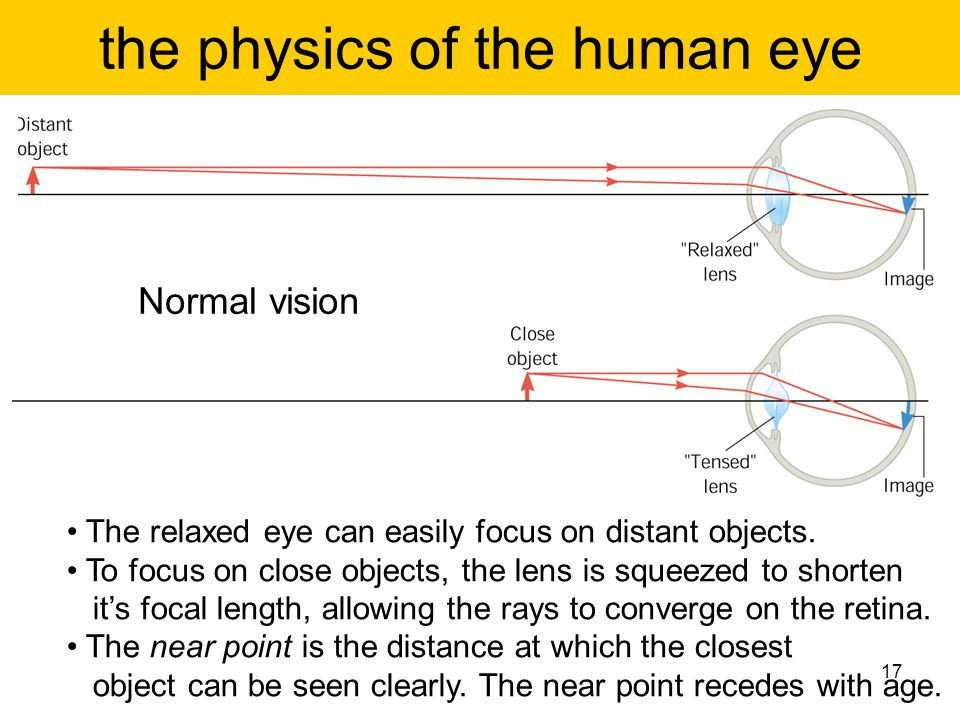 the physics of the human eye