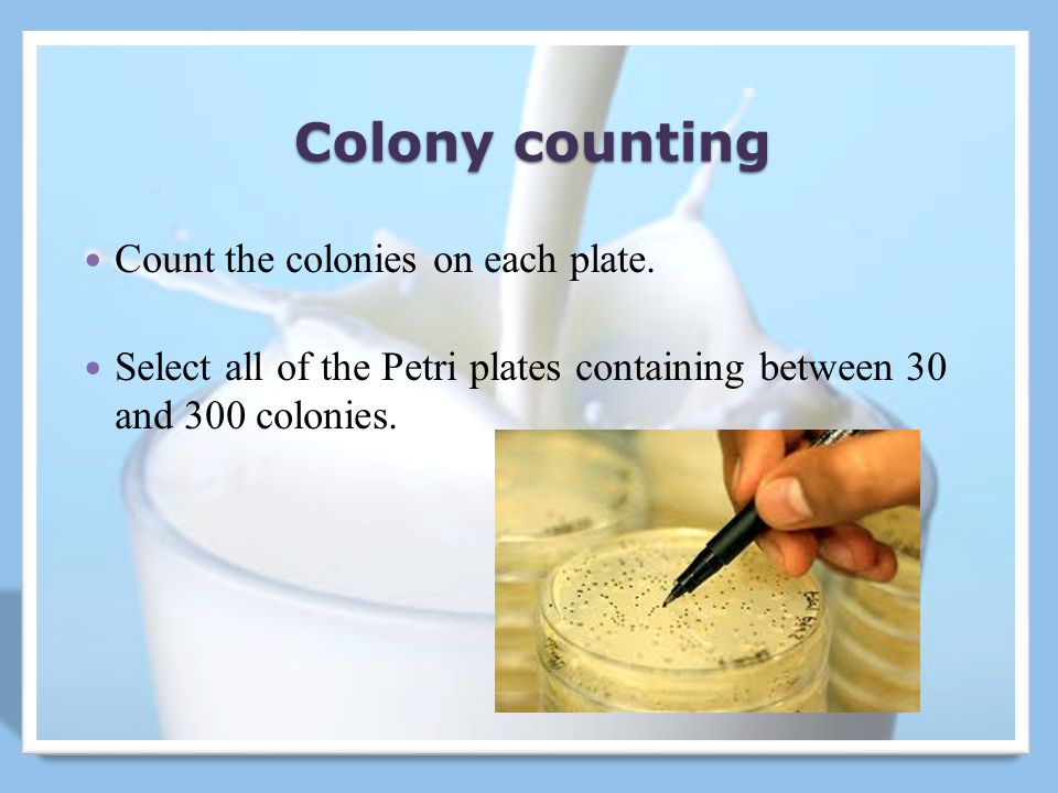 Colony counting Count the colonies on each plate.