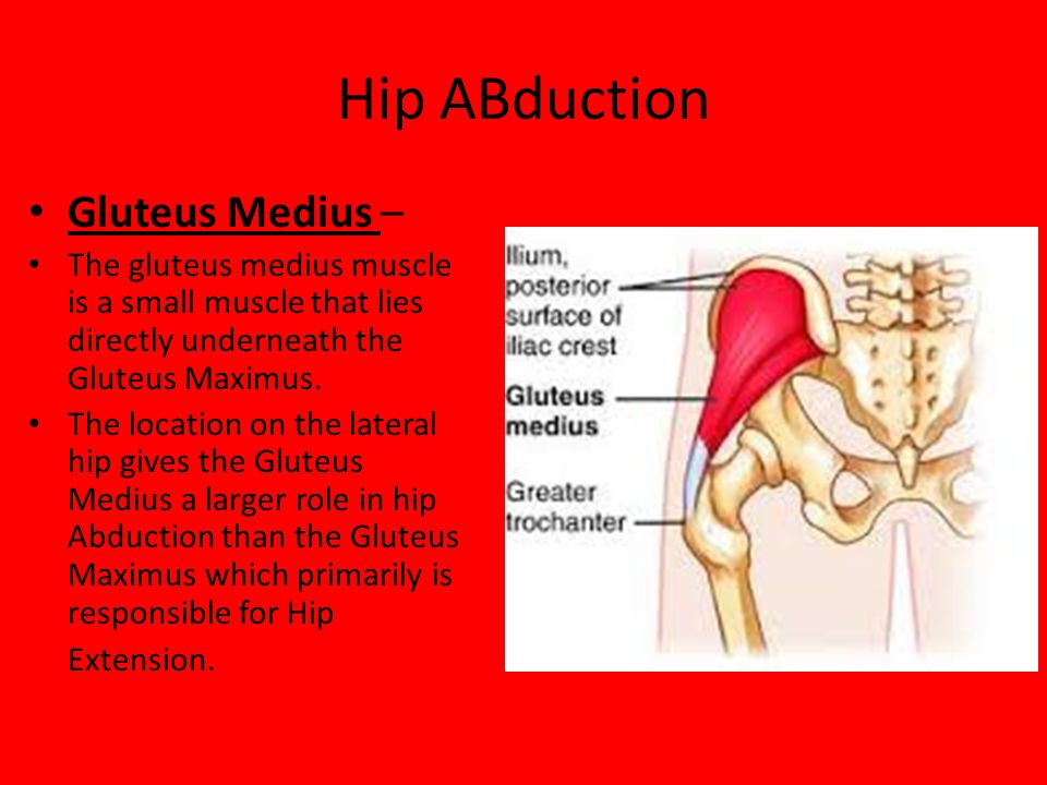 Hip ABduction Gluteus Medius –