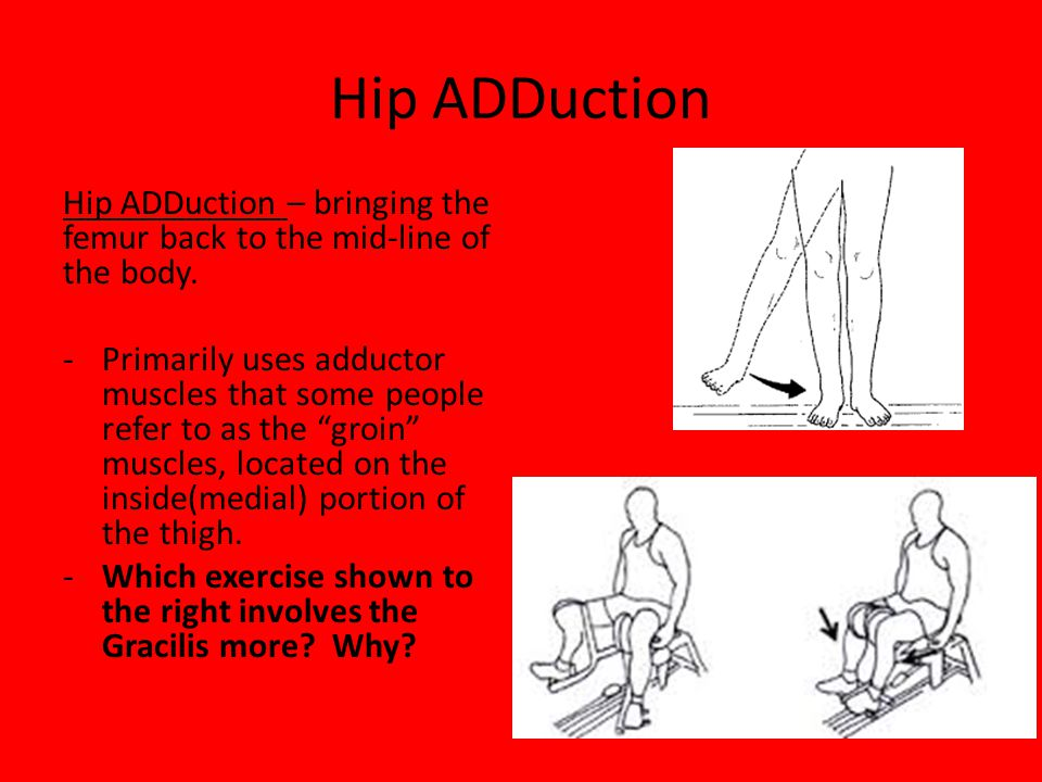 Hip ADDuction Hip ADDuction – bringing the femur back to the mid-line of the body.