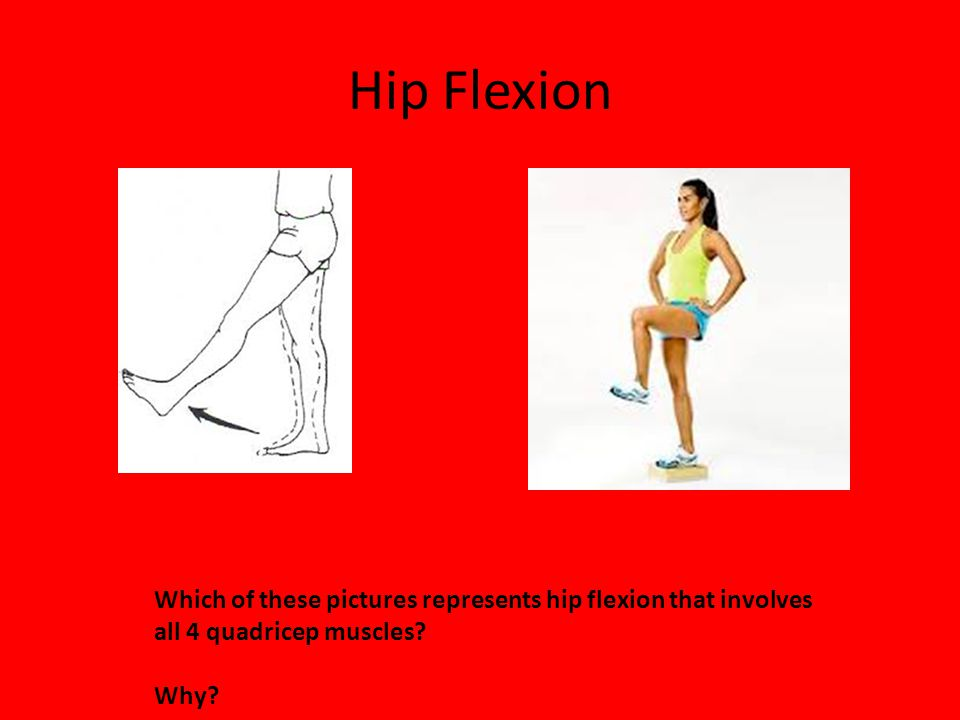 Hip Flexion Which of these pictures represents hip flexion that involves all 4 quadricep muscles.