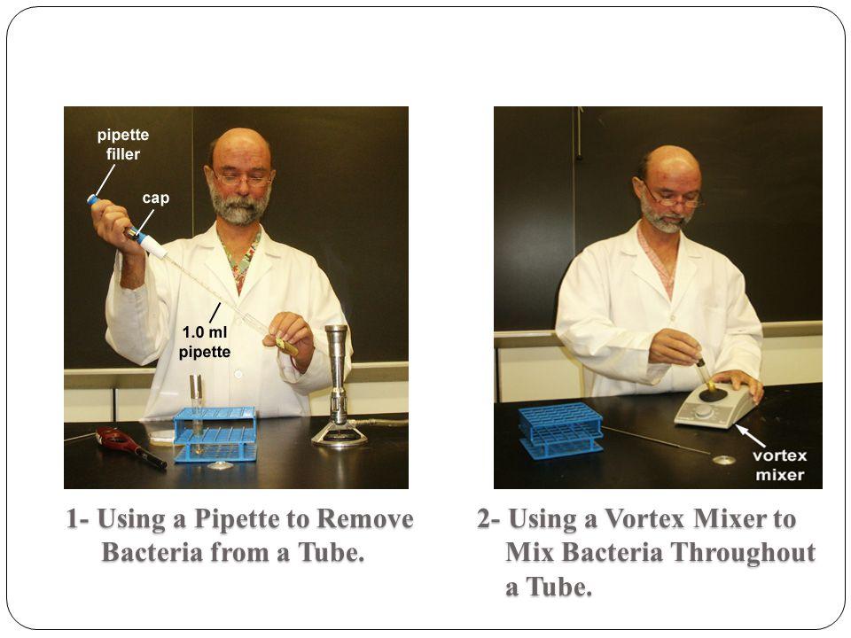 1- Using a Pipette to Remove