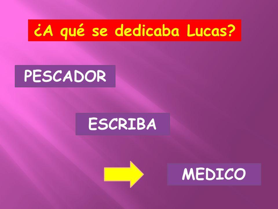 ¿A qué se dedicaba Lucas