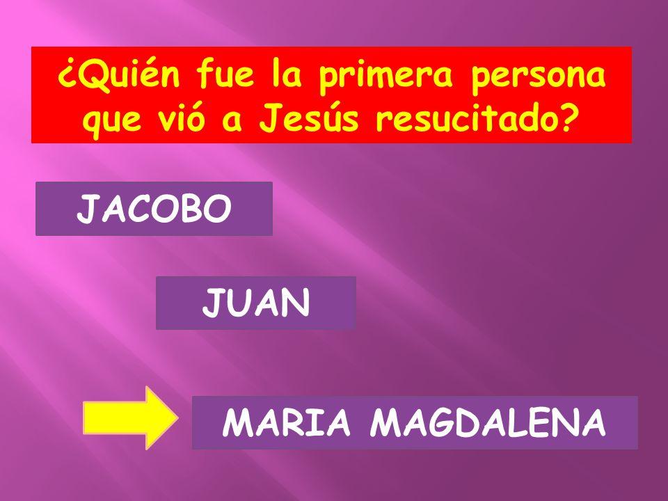 ¿Quién fue la primera persona que vió a Jesús resucitado