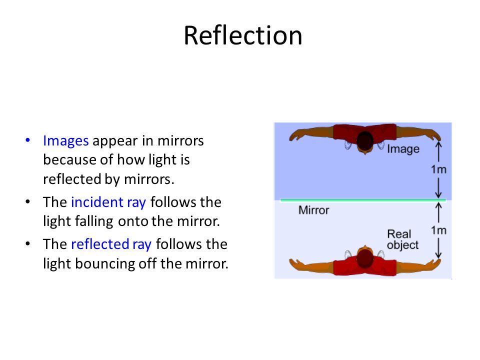 Reflection Images appear in mirrors because of how light is reflected by mirrors. The incident ray follows the light falling onto the mirror.