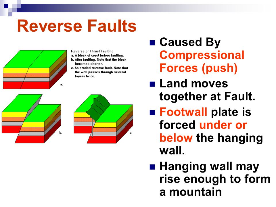 Reverse Faults Caused By Compressional Forces (push)