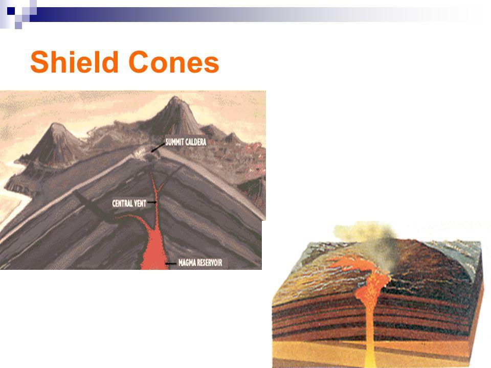 Shield Cones