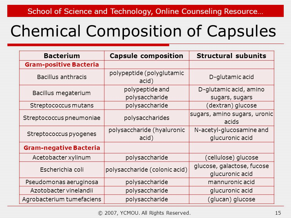 Chemical Composition of Capsules