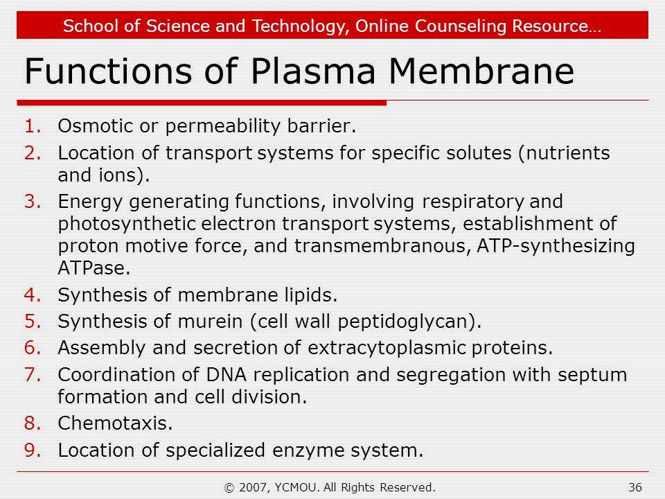 Functions of Plasma Membrane