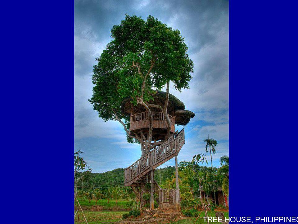 TREE HOUSE, PHILIPPINES