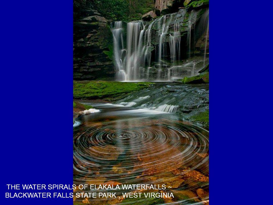 THE WATER SPIRALS OF ELAKALA WATERFALLS ~