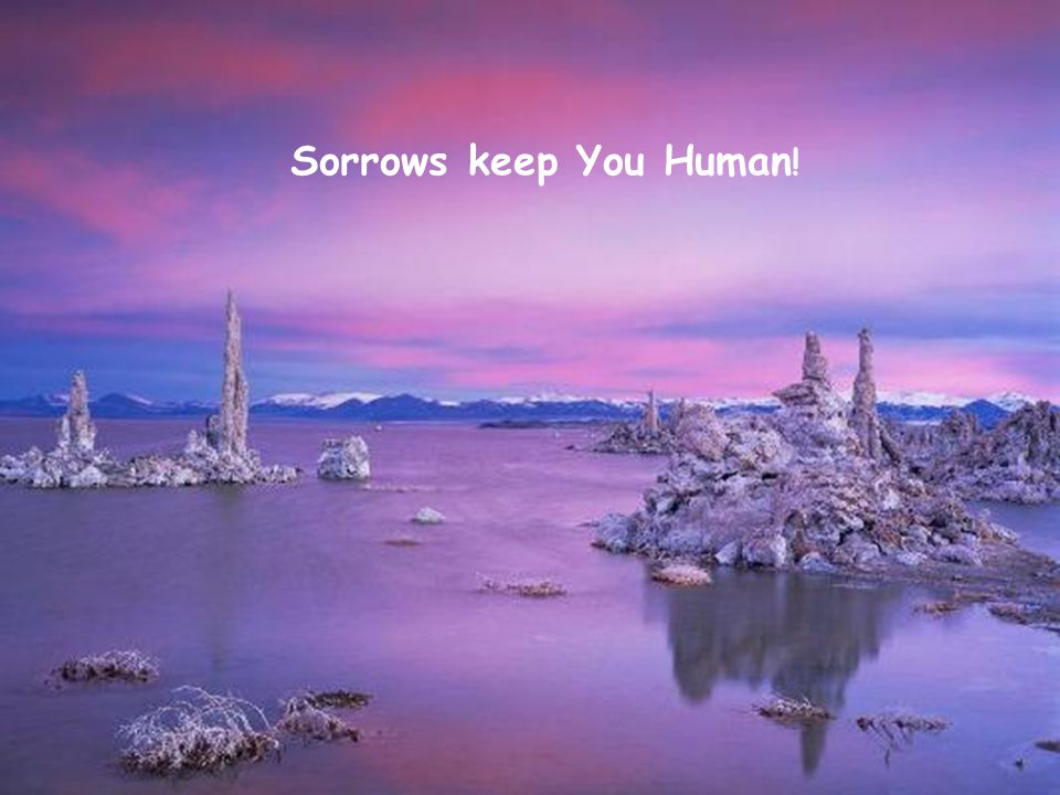 Sorrows keep You Human!