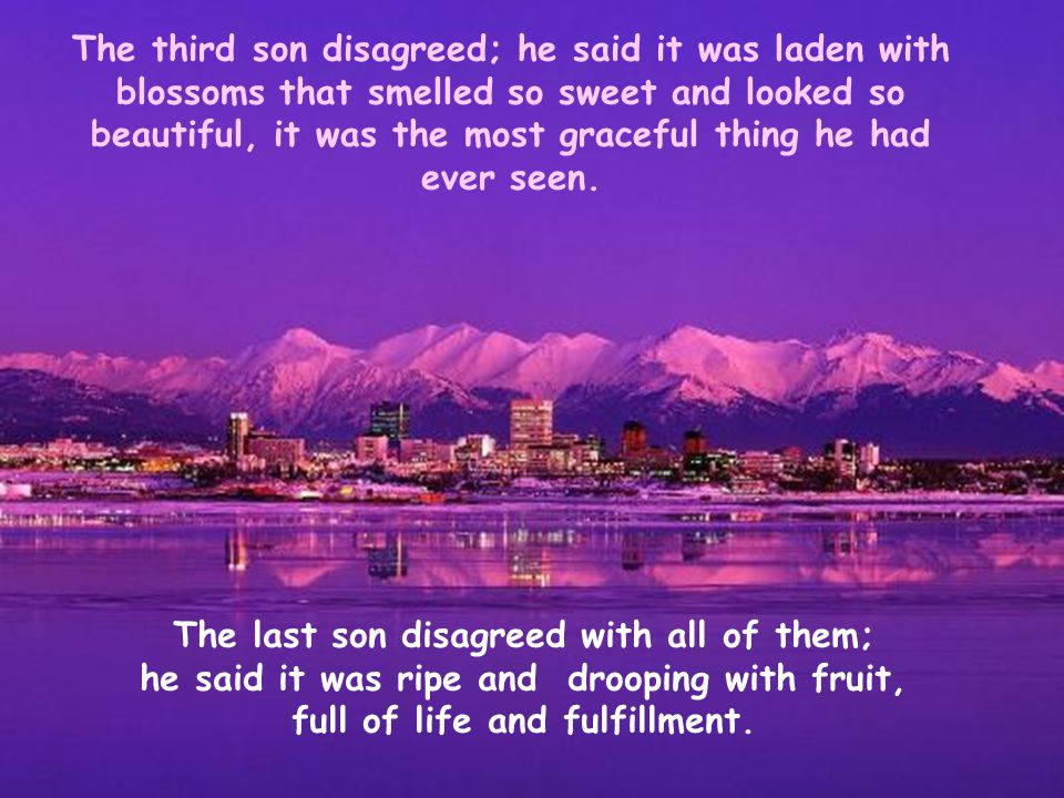 The last son disagreed with all of them;