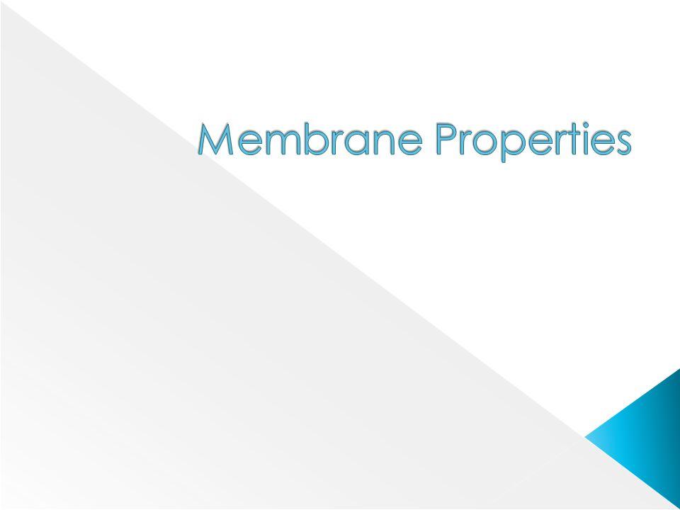 Membrane Properties