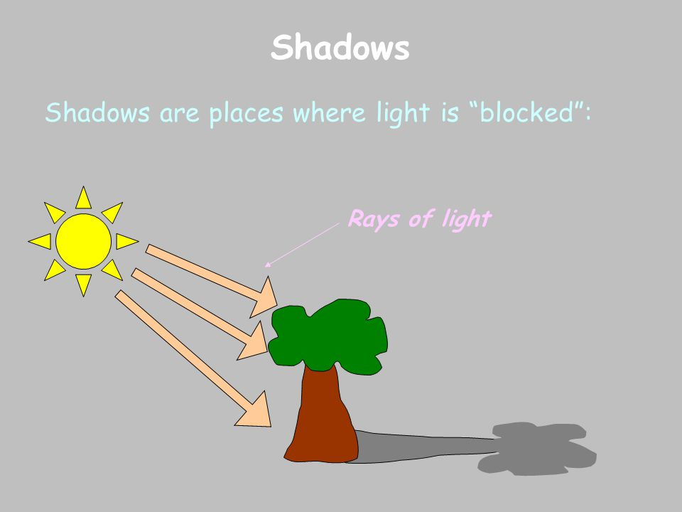 Shadows Shadows are places where light is blocked : Rays of light