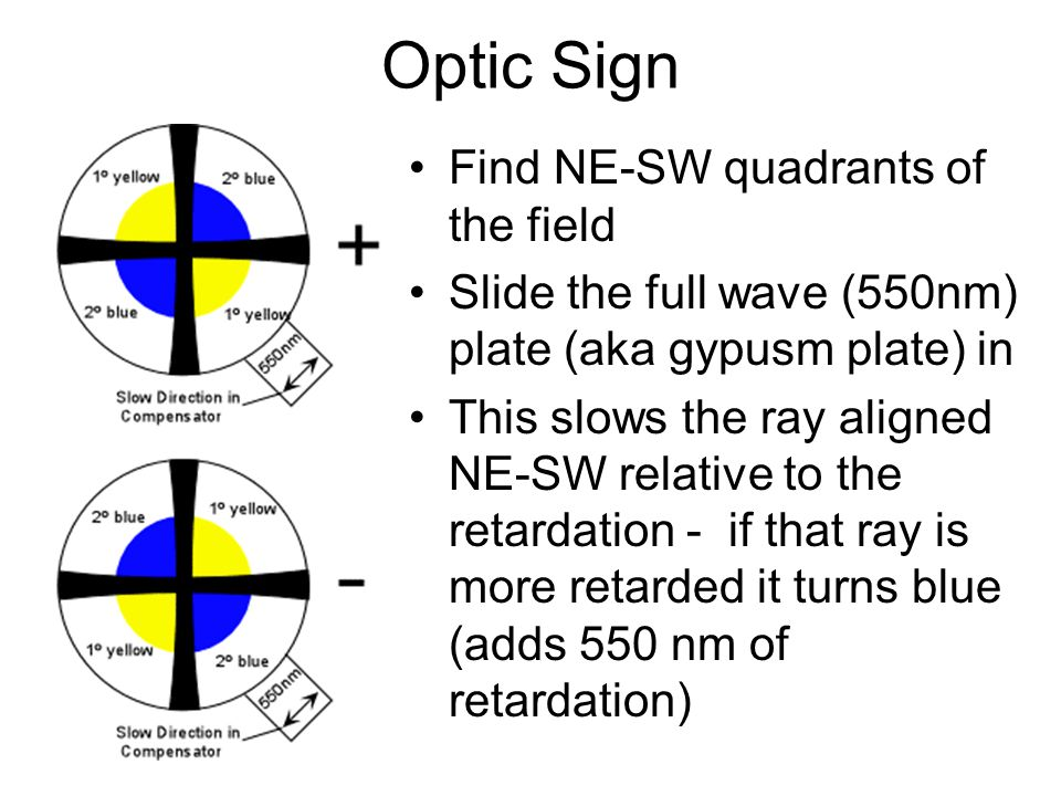 Optic Sign Find NE-SW quadrants of the field